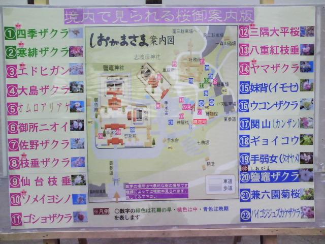 塩竈神社の案内図
